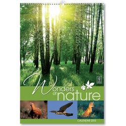 Wonders of Nature Wall Calendar 2015 - 15704S